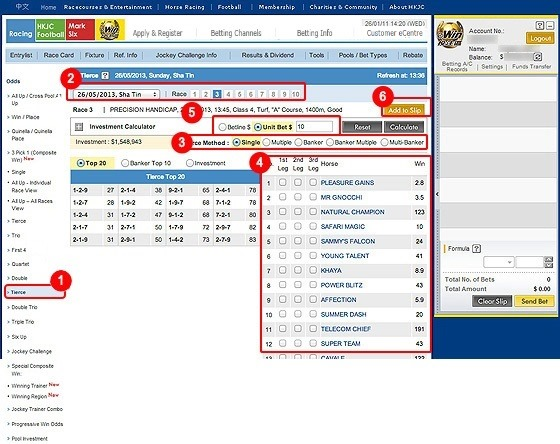 Horse Racing Demo - User Guide - Online Betting Service